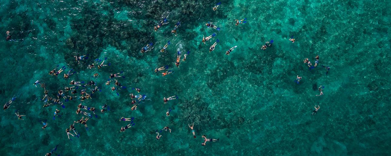 snorkelingPRM